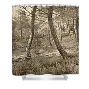 The Dance Of The Forest Shower Curtain