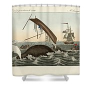 The Dangers Of Whale Fishing Shower Curtain