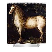 The Dapple-grey Shower Curtain