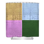 The Declaration Of Independence In Colors Shower Curtain by Rob Hans