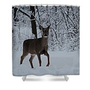 The Deer In The Snow Shower Curtain