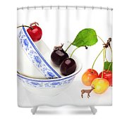 The Deers Among Cherries And Blue-and-white China Miniature Art Shower Curtain