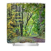 The Dense Forest Shower Curtain