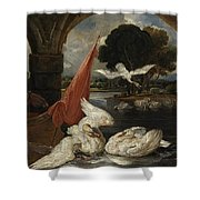 The Descent Of The Swan, Illustration Shower Curtain