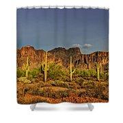 The Desert Aglow Shower Curtain