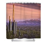 The Desert Beckons  Shower Curtain