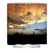 The Desert Sky  Shower Curtain
