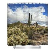 The Desert Southwest Shower Curtain