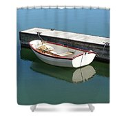 The Dingy Shower Curtain
