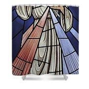 The Divine Mercy Shower Curtain