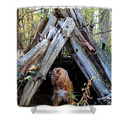 The Dog In The Teepee Shower Curtain