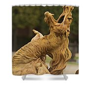 The Dragon Fountain Of Versailles  Shower Curtain