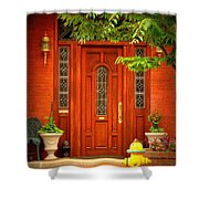 The Dream Door Shower Curtain