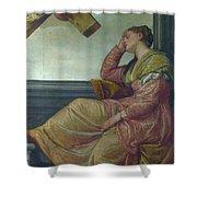 The Dream Of Saint Helena Shower Curtain