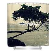 The Dream Still Alive Shower Curtain