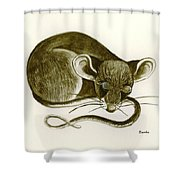 The Dreaming Mouse Shower Curtain