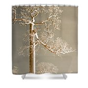 The Dreaming Tree Shower Curtain