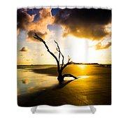The Driftwood Tree Folly Beach Shower Curtain