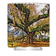 The Dueling Oak Painted Shower Curtain