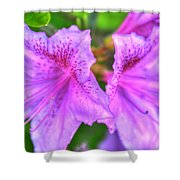 The Duet V1 Shower Curtain