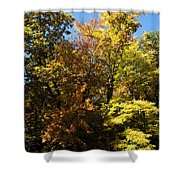 The Dune Trees Shower Curtain