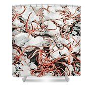 The Earthquake Worms Shower Curtain