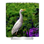 The Egret Outside My Window Shower Curtain