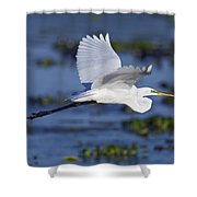 The Elegant Great Egret In Flight Shower Curtain