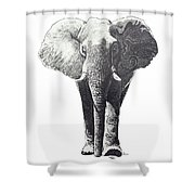 The Elephant Shower Curtain