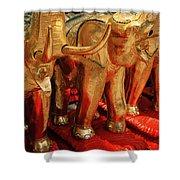 The Elephant Shrine Shower Curtain