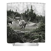 The Elk Painterly 2 Shower Curtain