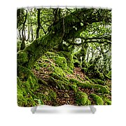 The Elven Forest No2 Wide Shower Curtain