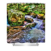 The Emerald Forest 2 Shower Curtain