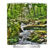The Emerald Forest 3 Shower Curtain