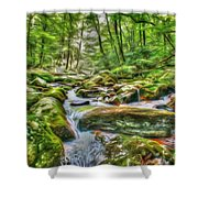 The Emerald Forest 4 Shower Curtain