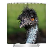 The Emu Shower Curtain