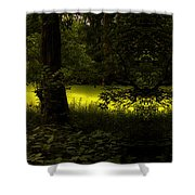The End Of The Path Mirror Image Shower Curtain