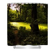 The End Of The Path Shower Curtain