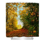 The End Of The Road. Shower Curtain