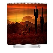 The Essence Of The Southwest Shower Curtain