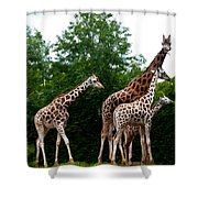 The Extended Family Shower Curtain