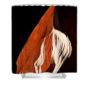 The Eye Of Lower Antelope Canyon Shower Curtain