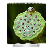 The Eyes Have It Shower Curtain by Jean Noren