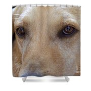 The Eyes Say It All Shower Curtain