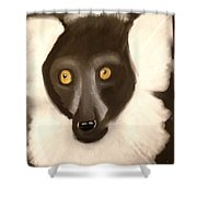 The Face Of A Lemur Shower Curtain
