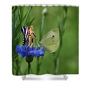 The Faerie And The Cabbage Butterfly Shower Curtain