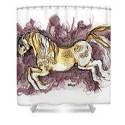 The Fairytale Horse 1 Shower Curtain