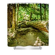 The Fallen Collection 10 Shower Curtain