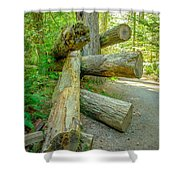 The Fallen Collection 5 Shower Curtain