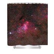 The False Comet Cluster In Scorpius Shower Curtain